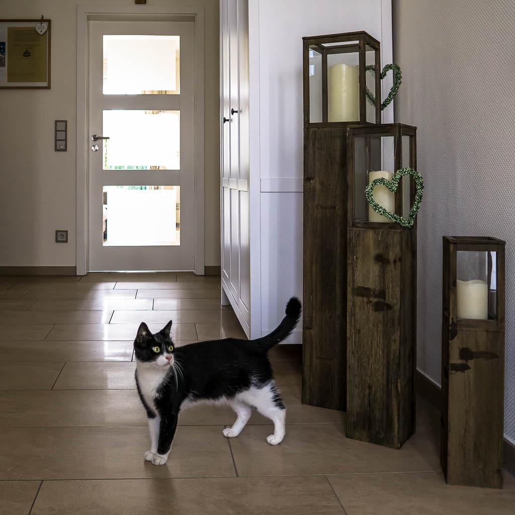 fliesen borgans fliesen naturstein beratung verlegen verkauf heinsberg. Black Bedroom Furniture Sets. Home Design Ideas